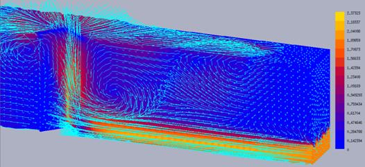 Numerical modeling velocity field at the inlet -- cross-sectional view